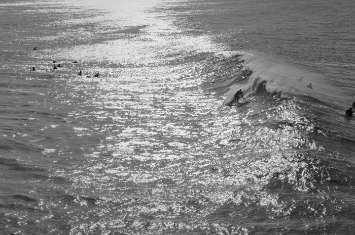 DSC 0687 Summerstew IV (surf)